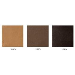 Glina črno rjava S 2510 10 kg